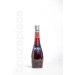 boozeplace Bols Cherry Brandy 24°